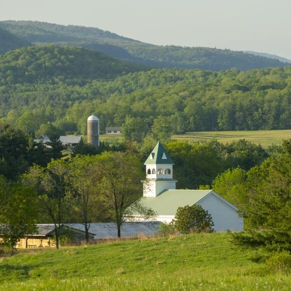 Vermont Stock